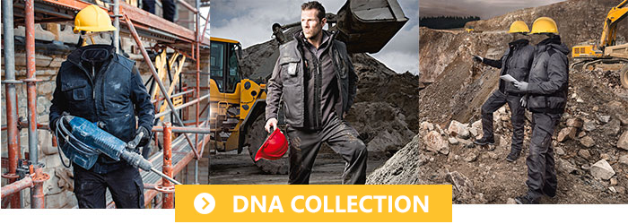 Collection DNA Dassy